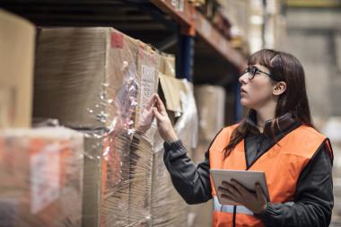 Warehouse management system adds brains to Borderline