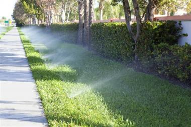 Spotlight On: Orbit Irrigation's B-hyve